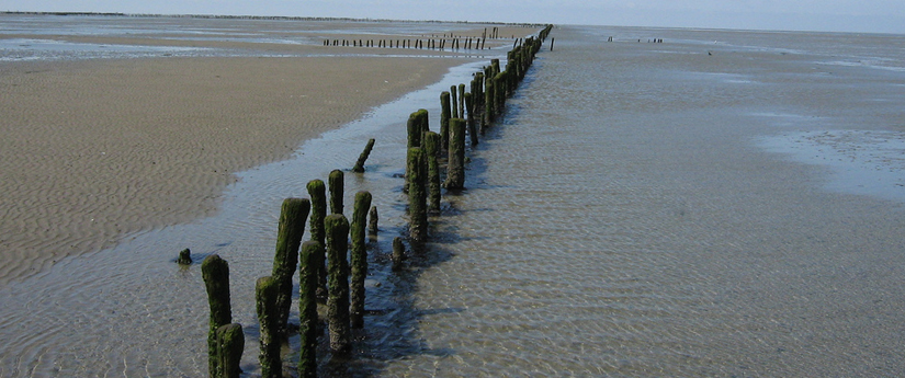 Hardlopen tijdens eb en vloed